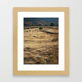 Summer hills Framed Art Print