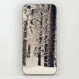 Winter Woods 1 iPhone Skin