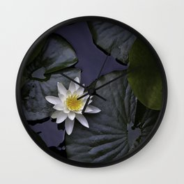 white water lily Wall Clock