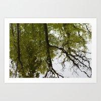 mirror Art Prints featuring Mirror by dominiquelandau