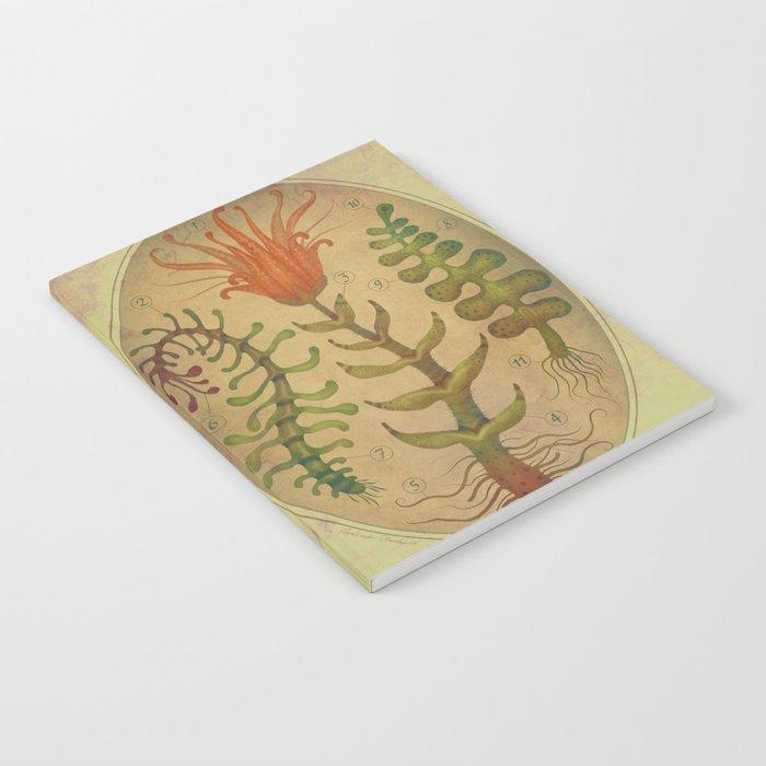 PLANTAE I Notebook