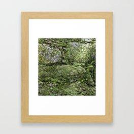 The spring wall Framed Art Print