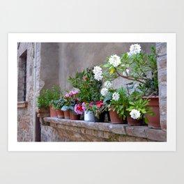 Tuscan Garden Art Print