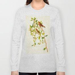 Lesser Red-Poll Bird Long Sleeve T-shirt