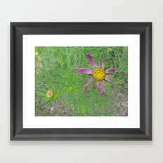 Though you may wilt, you will always be beautiful Framed Art Print