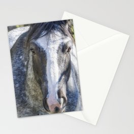 Mica Stationery Cards