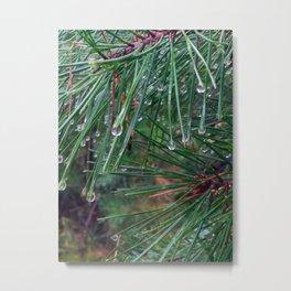 Liquid Pines Metal Print