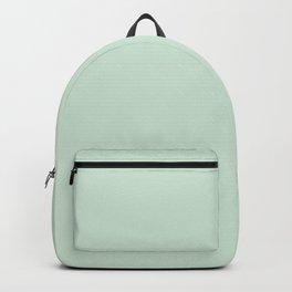 light mint green Backpack