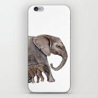 elephants iPhone & iPod Skins featuring Elephants by Goosi