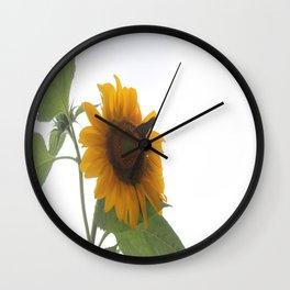 Butterflies on The Sun A Wall Clock