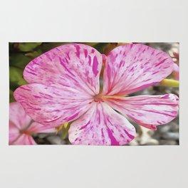 Variagated Begonia Pink Petals Rug
