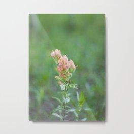 Pink Paintbrush Metal Print
