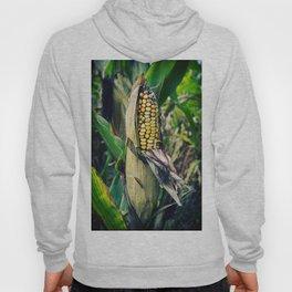 Corn Hoody