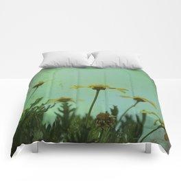 Fragile Flowers Comforters