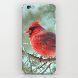 Dreamy Morning (Northern Cardinal) iPhone Skin