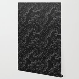 Black & White Topography map Wallpaper