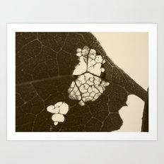 dead leaf 2015 II Art Print