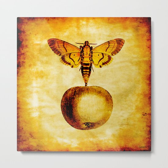 The butterfly and the golden apple Metal Print
