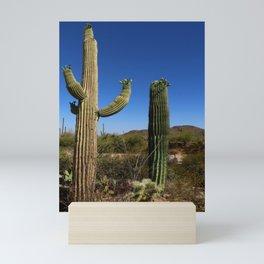In The Sonoran Desert Mini Art Print