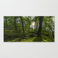 Summer Evenings In Wales Canvas Print