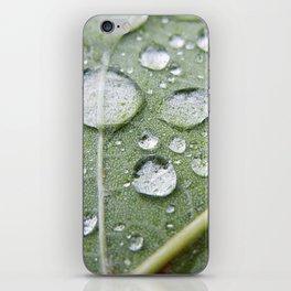 In The Foliage iPhone Skin