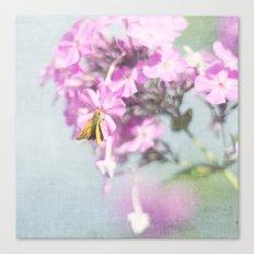 Tiny Flyer Canvas Print