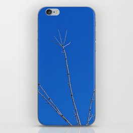 Tree Reaches for the Sky, with a Bony Hand iPhone Skin