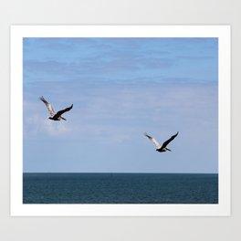 Pair of Pelicans Art Print