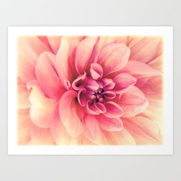 Her Smile (Spring Blooming Rose Pink Dahlia) Art Print