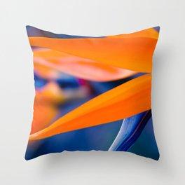 Gods Garden Throw Pillow