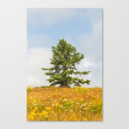 Meadow Warden Canvas Print