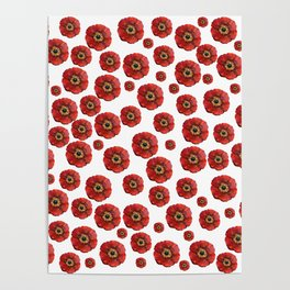 Red Poppies Transparent Poster