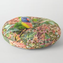 Marvelous Awesome Colorful Exotic Rainbow Lorikeet Parrot Ultra HD Floor Pillow