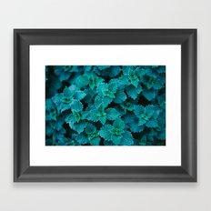Cold Green Framed Art Print