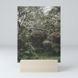 Jungle of Trees in Hilo, Hawaii Mini Art Print