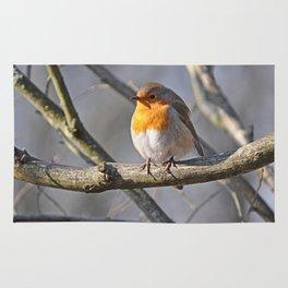 Robin Redbreast Rug