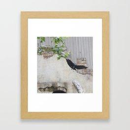 Attila Framed Art Print