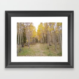 Now Theres a Campsite! Framed Art Print
