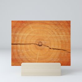 Split log Mini Art Print