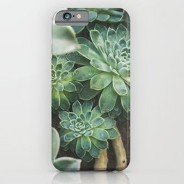 Succulent Forest iPhone Case