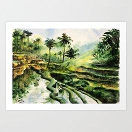 Sunny rice fields of Bali, Indonesia - Watercolor art Art Print
