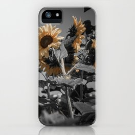 Sunflowers On My Mind iPhone Case
