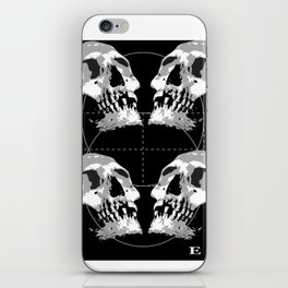 Recreate iPhone Skin