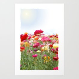 Bloom Where You're Planted! Art Print