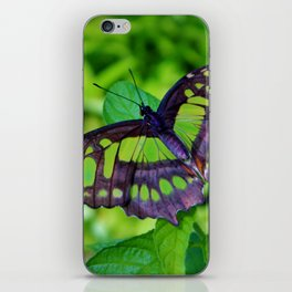 Green And Black Butterfly iPhone Skin