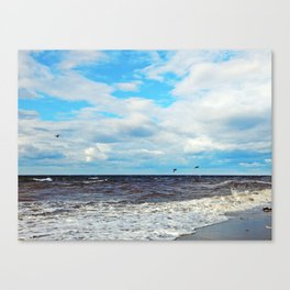 Flying Cormorants Canvas Print