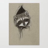raccoon Canvas Prints featuring Raccoon by Daydreamer