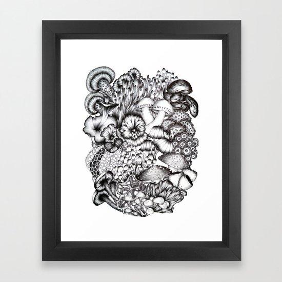 A Medley of Mushrooms by ecmazur