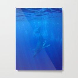 Underwater Humpbacks 9 Metal Print