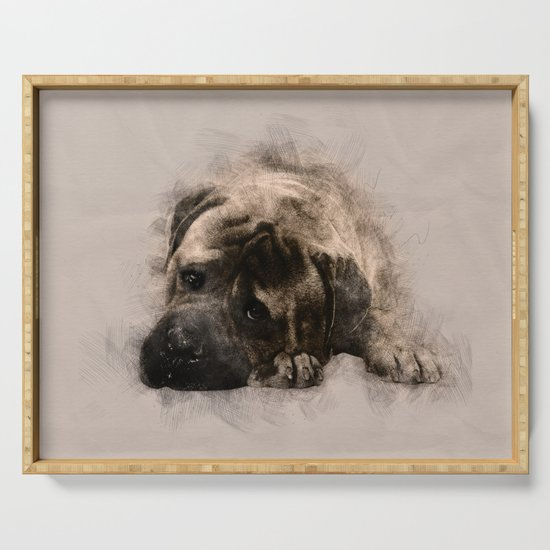 Bullmastiff Puppy Sketch by k9printart